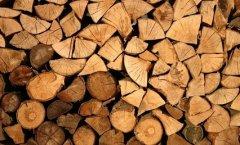 密度高就是好木材?别再被误导了!